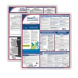 Federal & State Labor Law Poster Sets